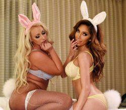 Sexy Bunny Girls mit dicken Titten